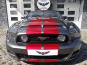 Mustang-Pasy